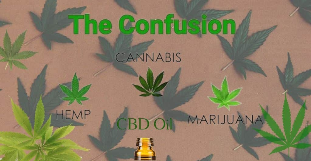 Cannabis, Marijuana, Hemp & CBD Oil