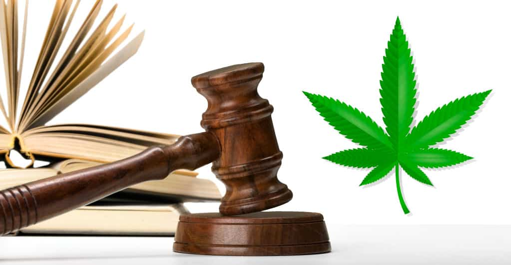 US Federal Court orders California regulators to comply with DEA